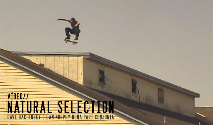 3758Dave Bachinsky & Dan Murphy – Natural Selection || 9:52
