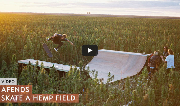 10523AFENDS|SKATE IN THE HEMP FIELD||1:11
