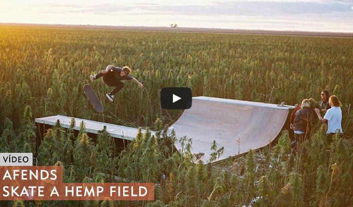 10523AFENDS|SKATE IN THE HEMP FIELD||1:11