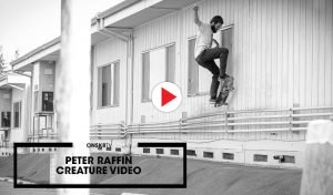 peter-raffin-creature-video