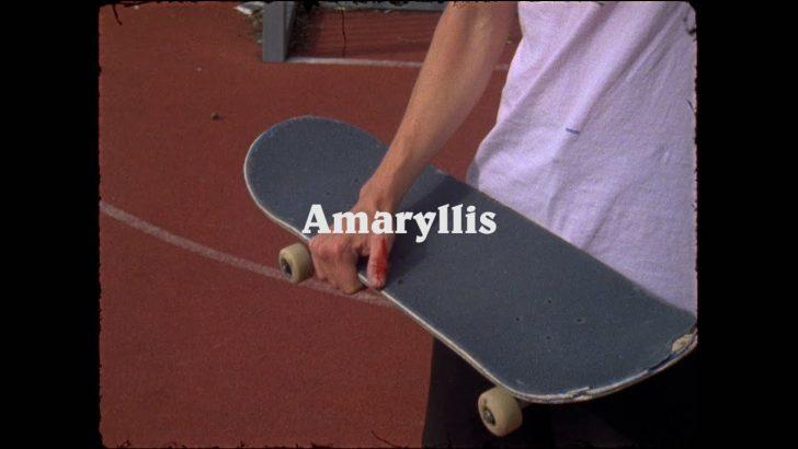 16233Amaryllis||9:37
